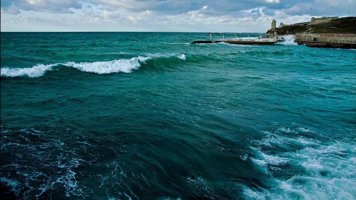 Украинский центр экологии моря провел самое масштабное исследование за последние 25 лет