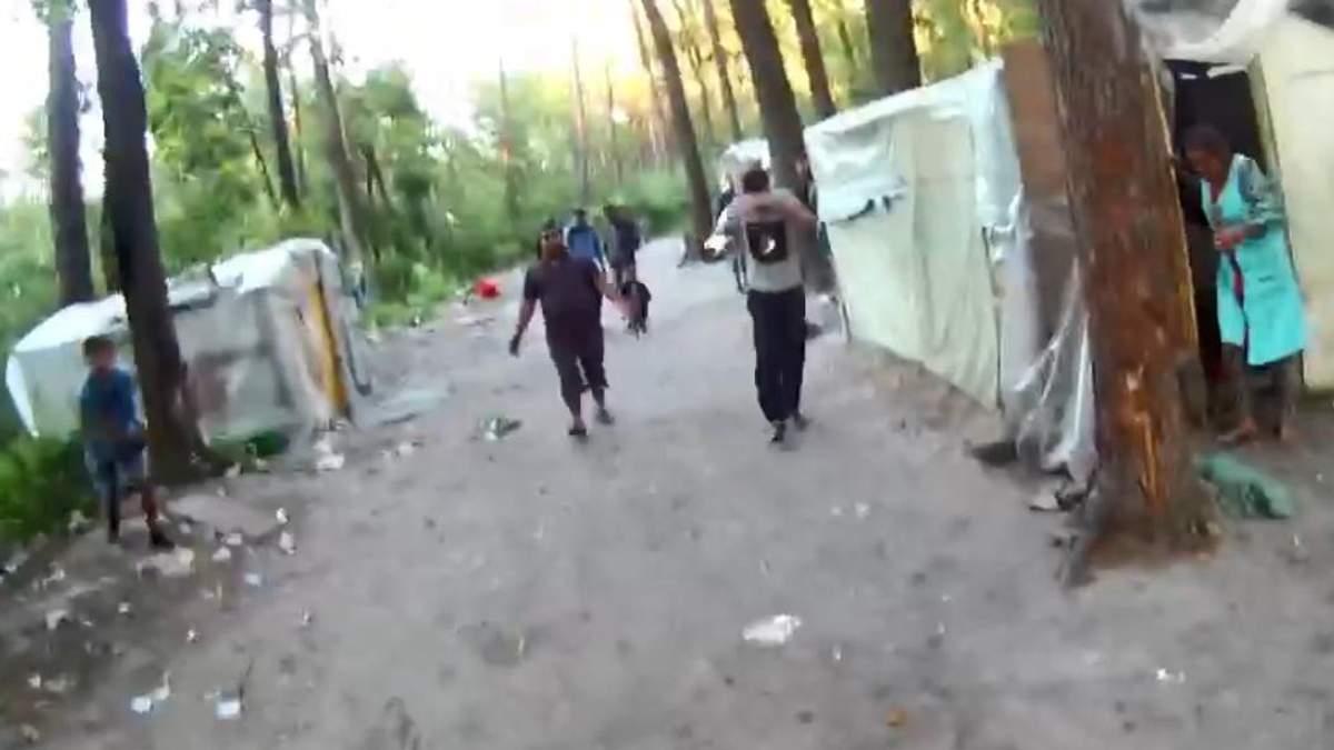 Активісти опублікували відео, як роми закидують камінням еколога у Голосіївському парку