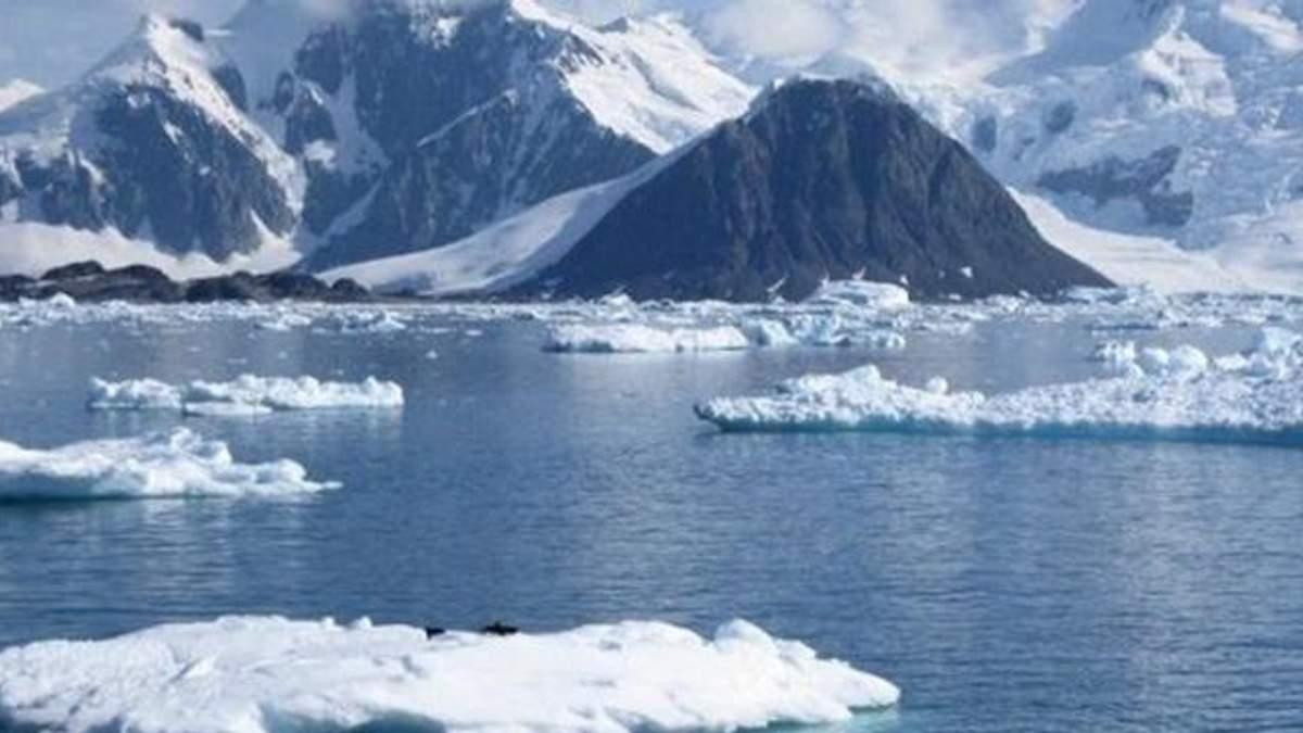 Лід в Антарктиці тане з рекордною швидкістю