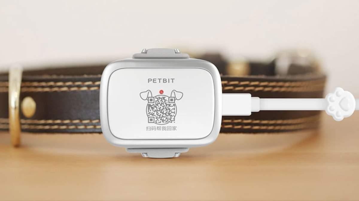 Xiaomi презентовала PetBit: функции и цена новинки