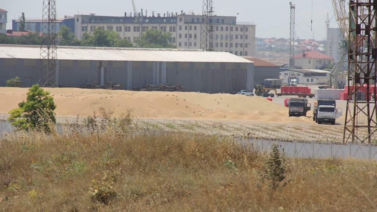 В порту оккупированного Севастополя обильные осадки заливают тонны зерна: фото