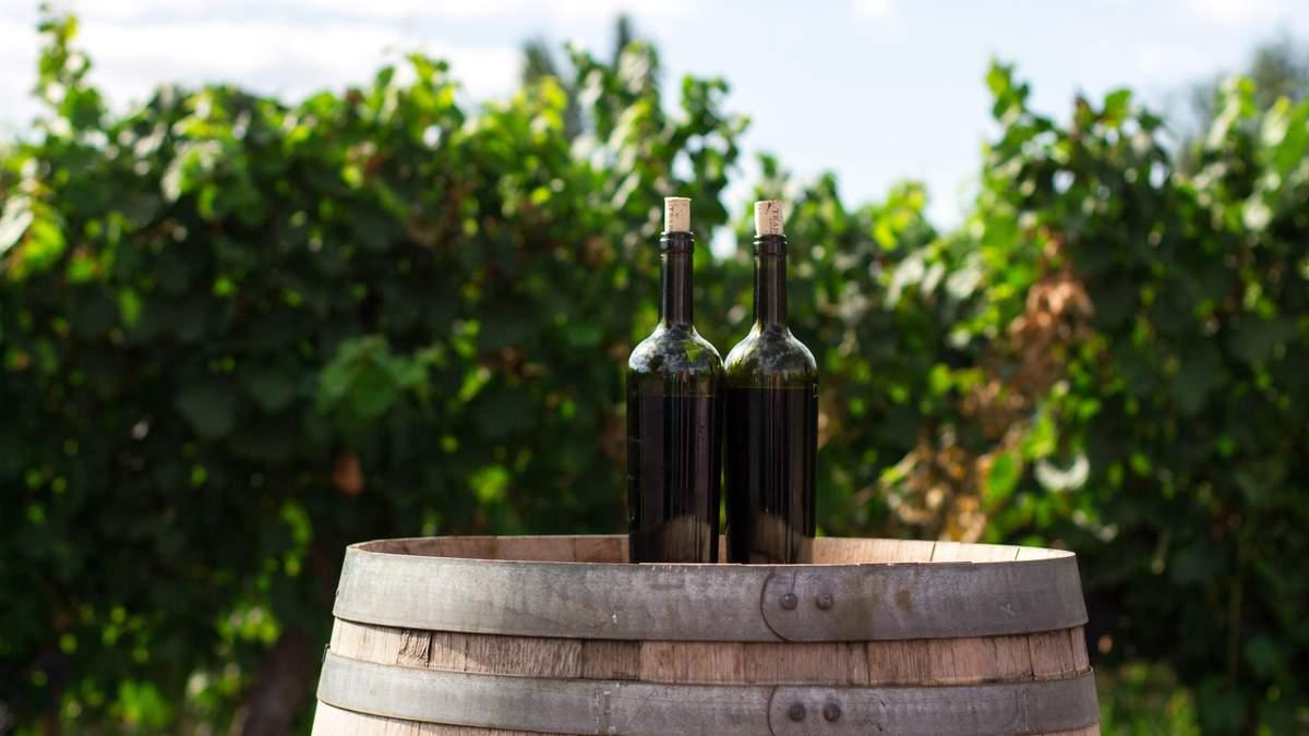 Все про вино - як вино дорослішає та змінює смак з часом