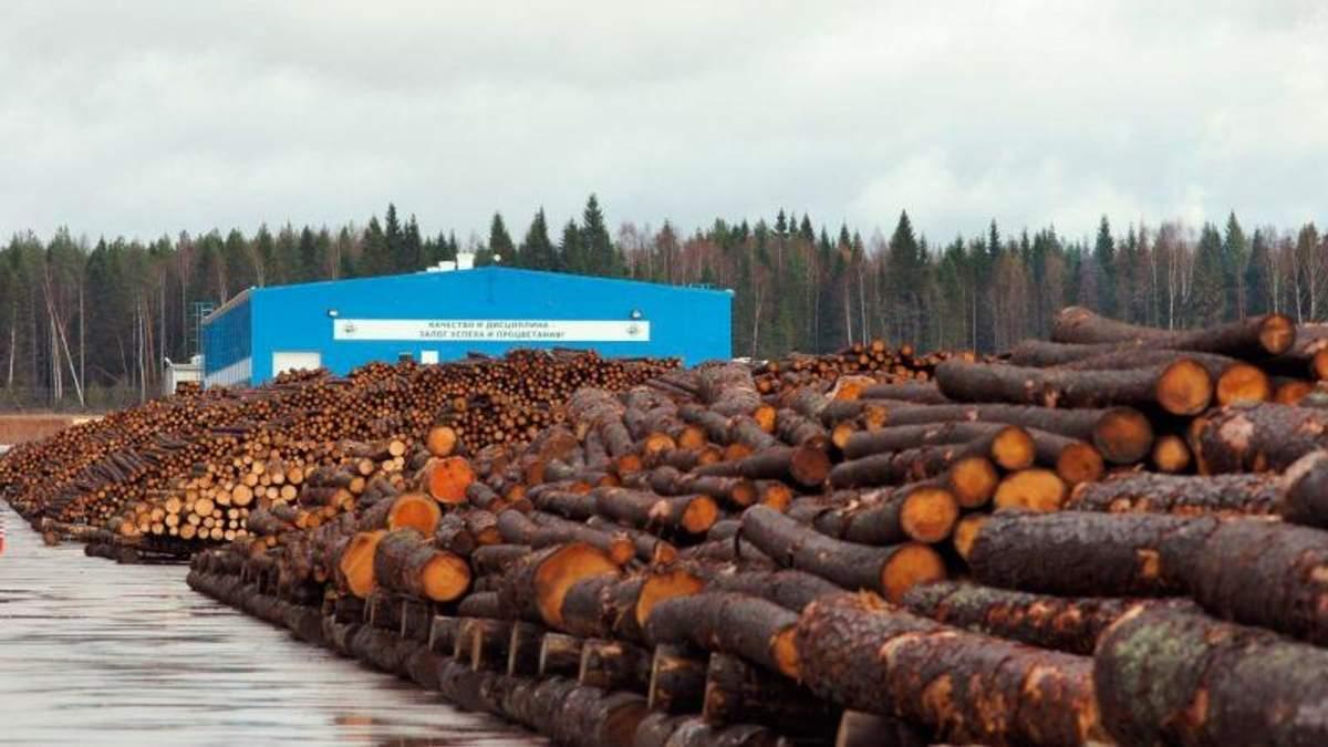 Верховна Рада визначилася з покаранням для контрабандистів лісу