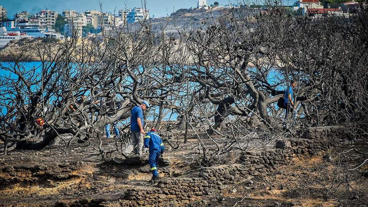 В Греции задержали мужчину, которого подозревают в поджогах леса