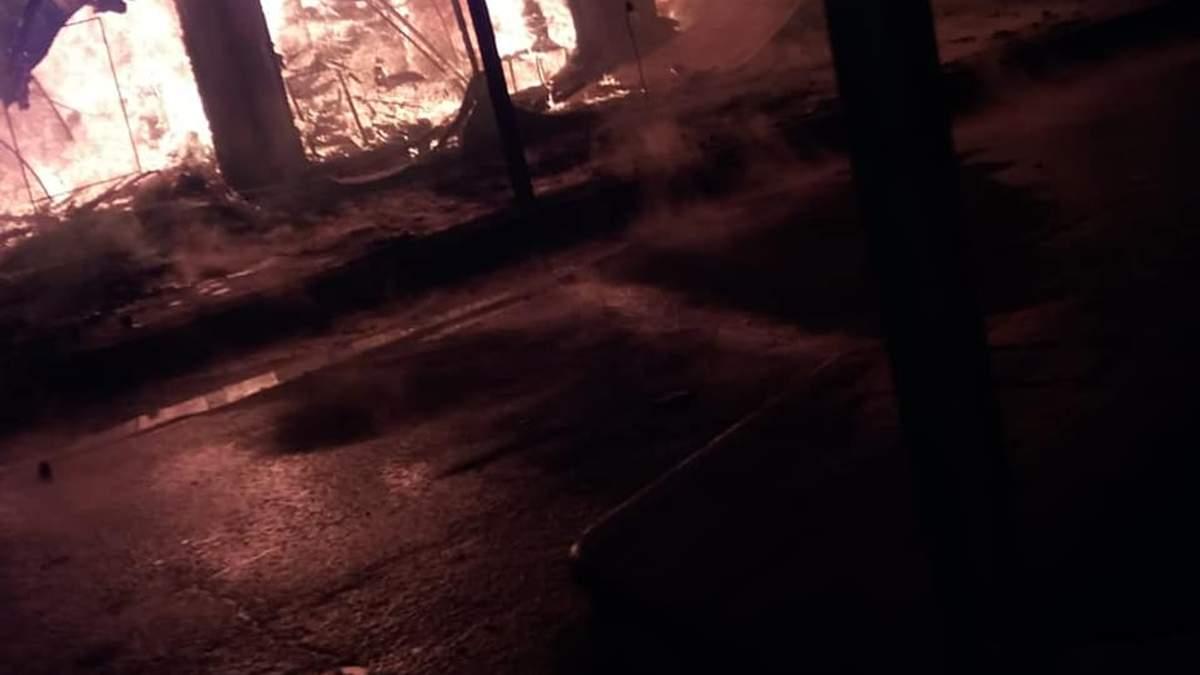 У Коблево сталася масштабна пожежа