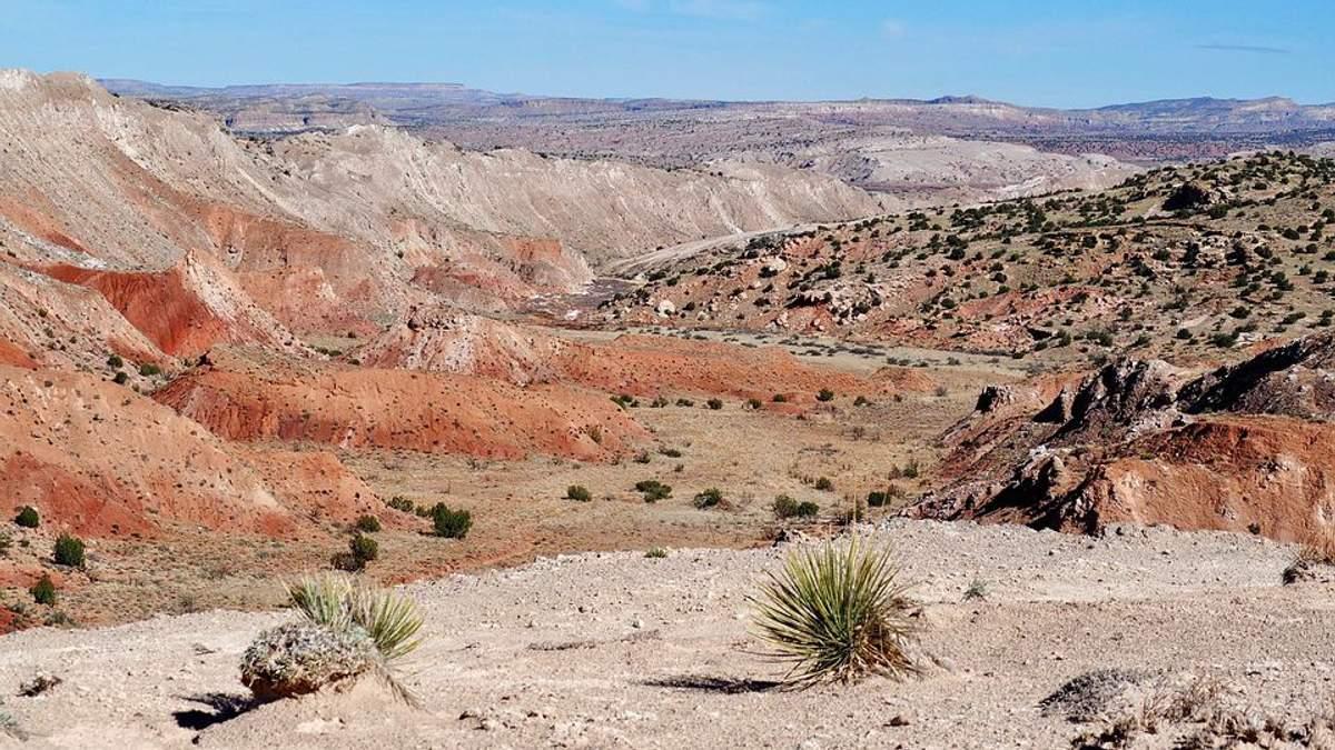 Пустыня в штате Нью-Мексико