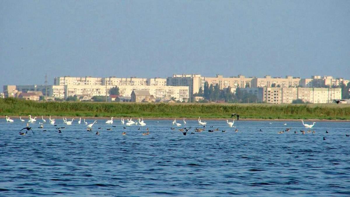 Химвыброс в Крыму: Климкин заявил, что Украина ни при каких обстоятельствах не будет поставлять воду в оккупированный Крым