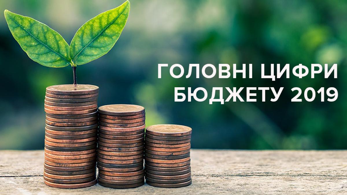 Бюджет Украины 2019: на что государство будет тратить больше