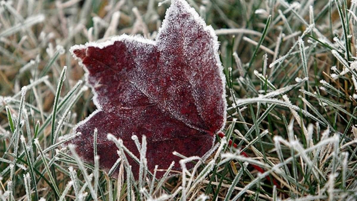 Синоптики розповіли, що перші заморозки в Україні – вже з наступного тижня