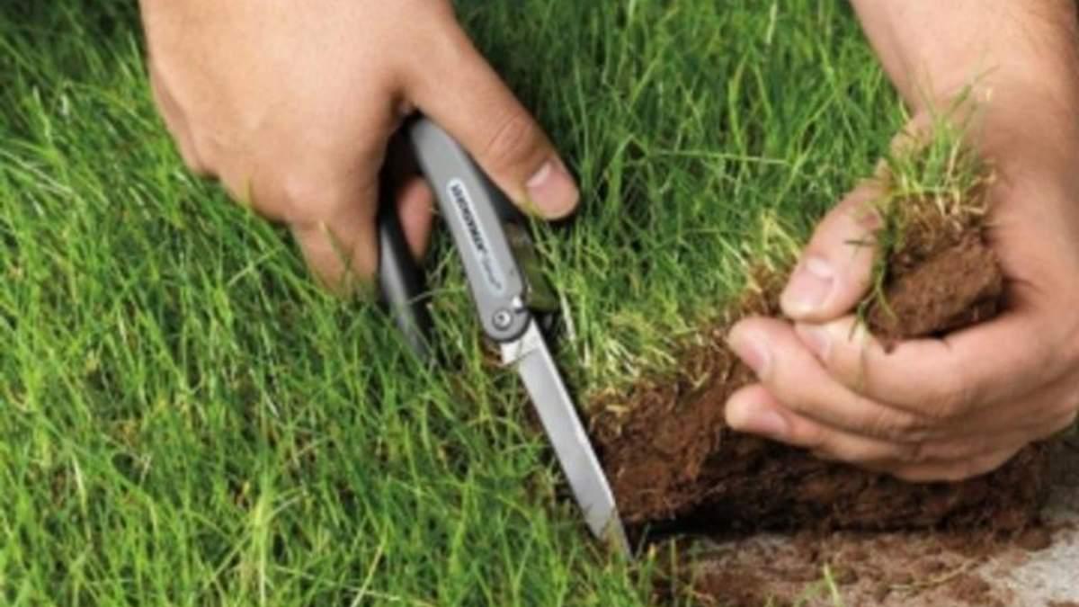 ТОП-4 найвідоміші схеми незаконного захоплення земельних ділянок