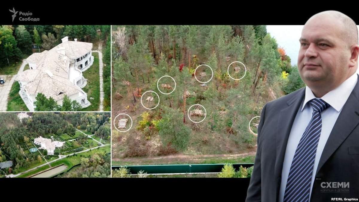Журналісти виявили біля маєтку екс-міністра екології Злочевського вирубку державного лісу