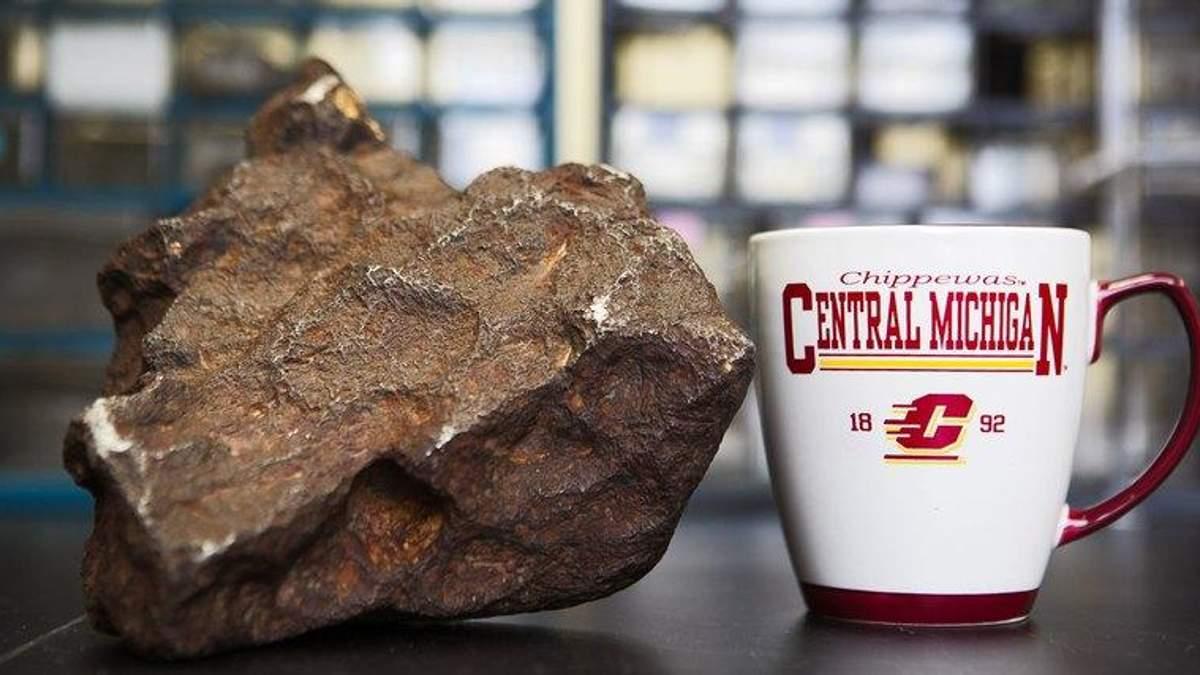 В США мужчина десятилетиями подпирал дверь редким метеоритом