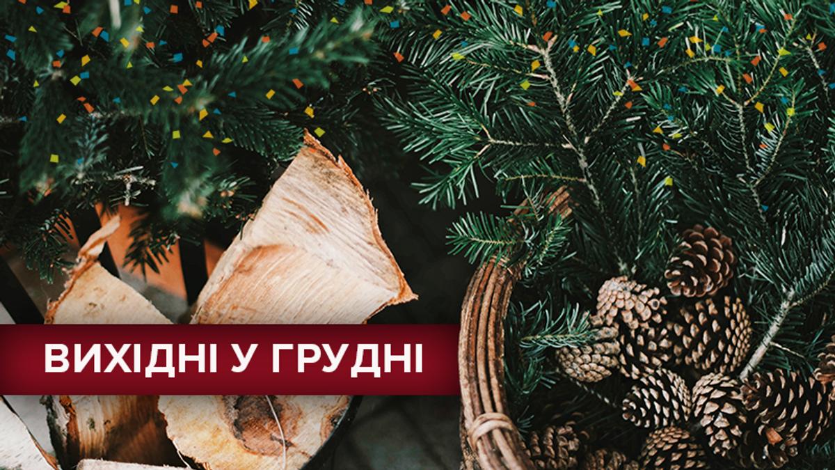 Вихідні дні у грудні 2018 в Україні: календар