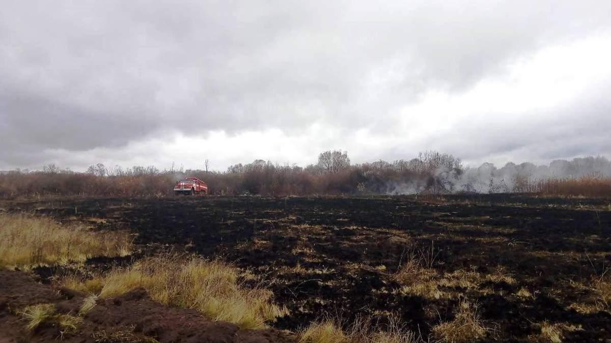 На Чернігівщині горить торф на площі у понад 3 гектари