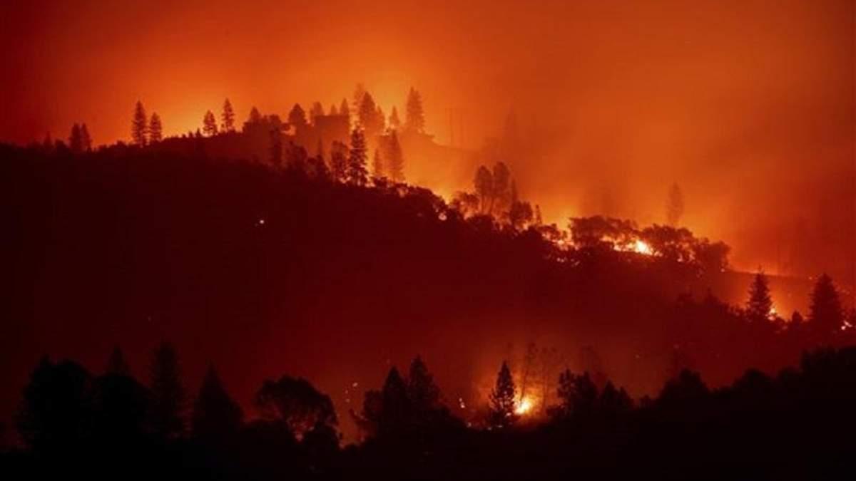 Стихійна пожежа у Каліфорнії найпотужніша за останні 85 рків