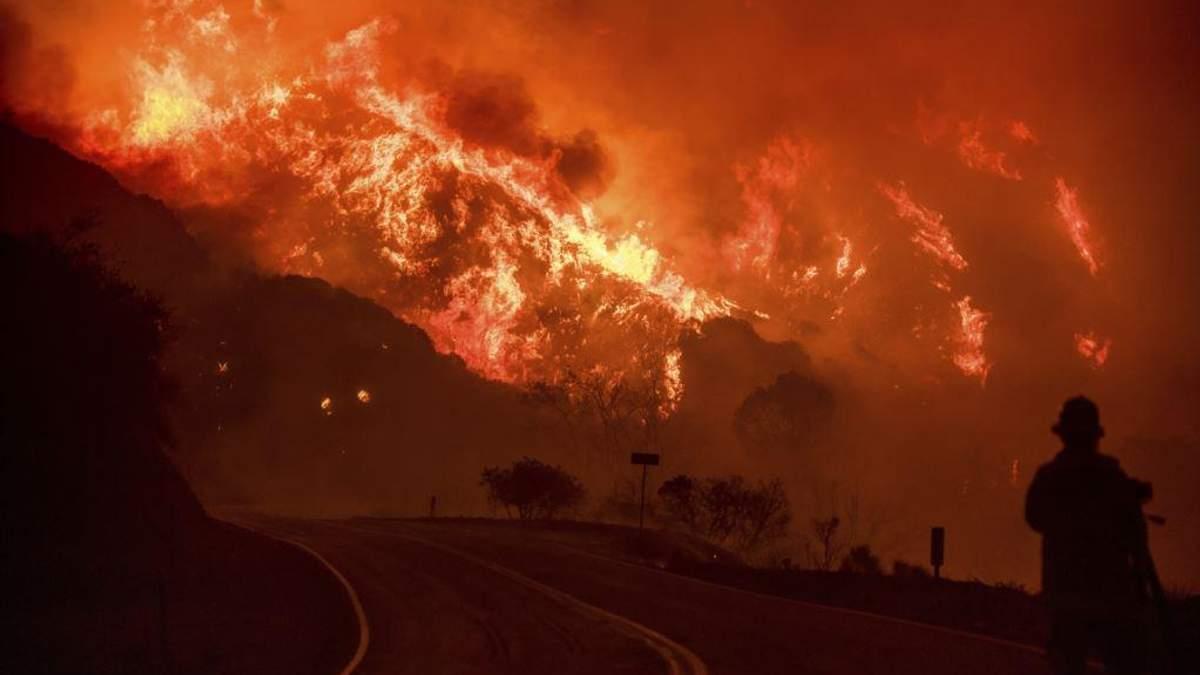 Украинка с детьми оказалась в эпицентре ужасного пожара в Калифорнии: жуткое видео