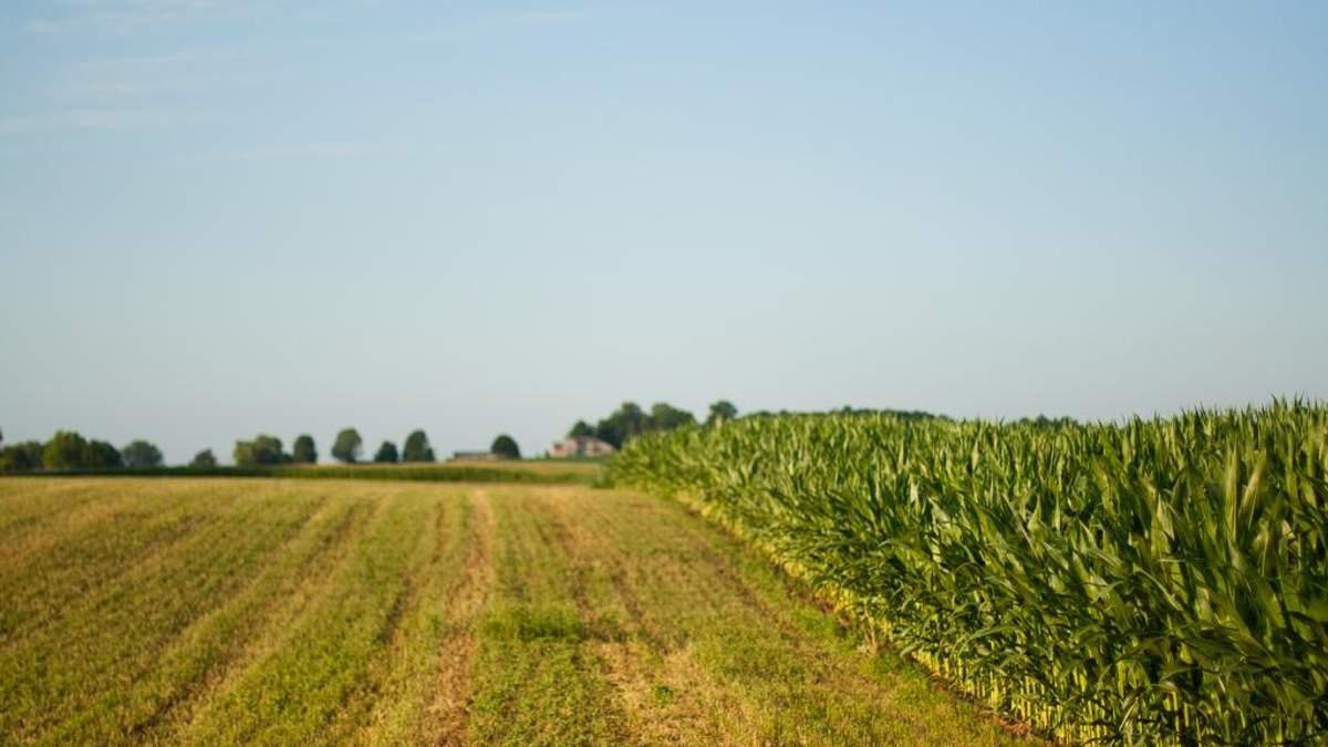 В Украине тестируют портал по оценке земли