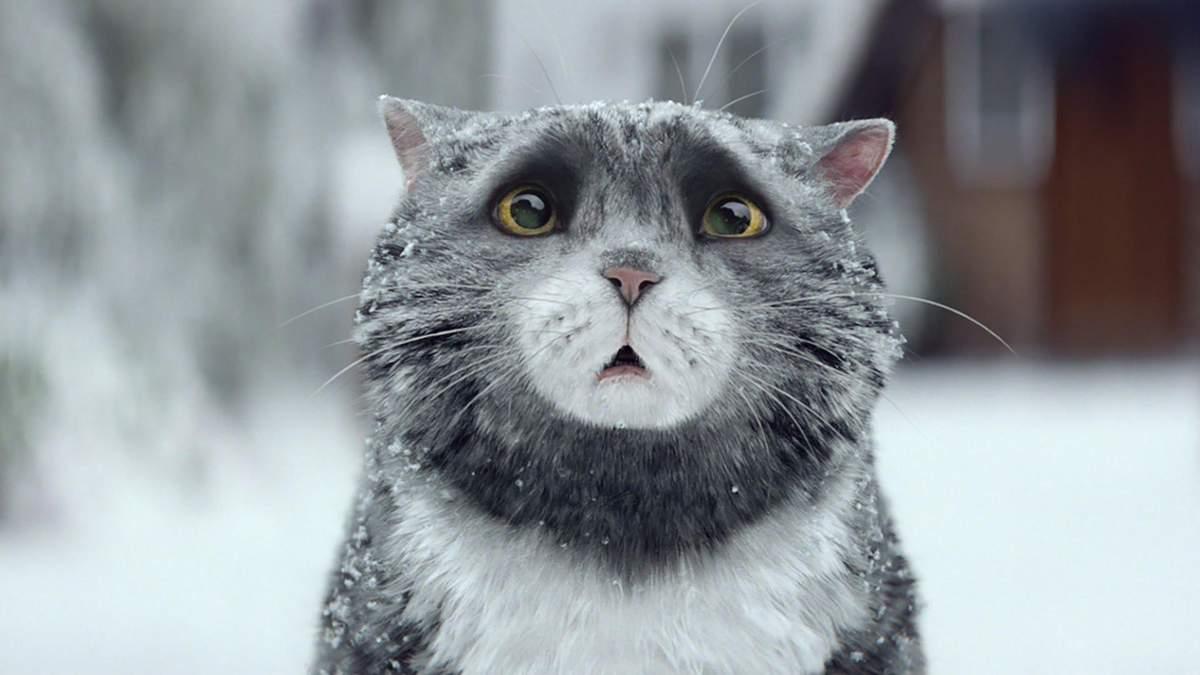 Новий рік Україна зустріне без снігу