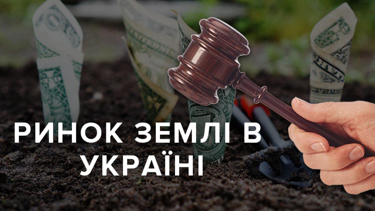 Рынок земли в Украине: состоялись первые аукционы по аренде земельных участков