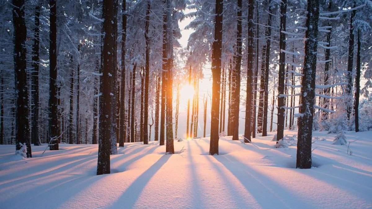 Погода 3 лютого 2019 Україна - прогноз погоди від синоптика