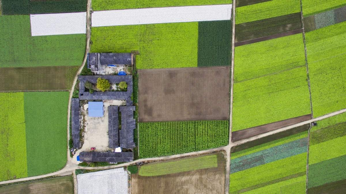 Как оформить земельный участок в 10 раз быстрее: предложения от Минрегиона