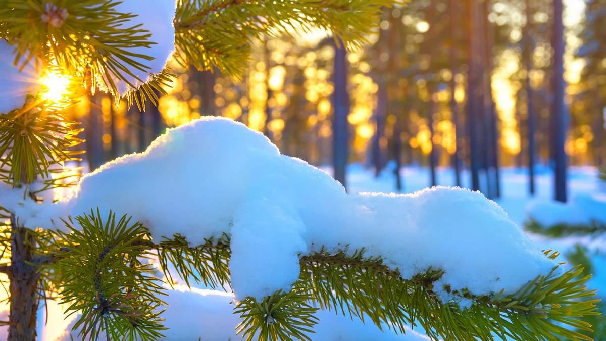 Погода 18 лютого 2019 Україна: прогноз погоди від синоптика