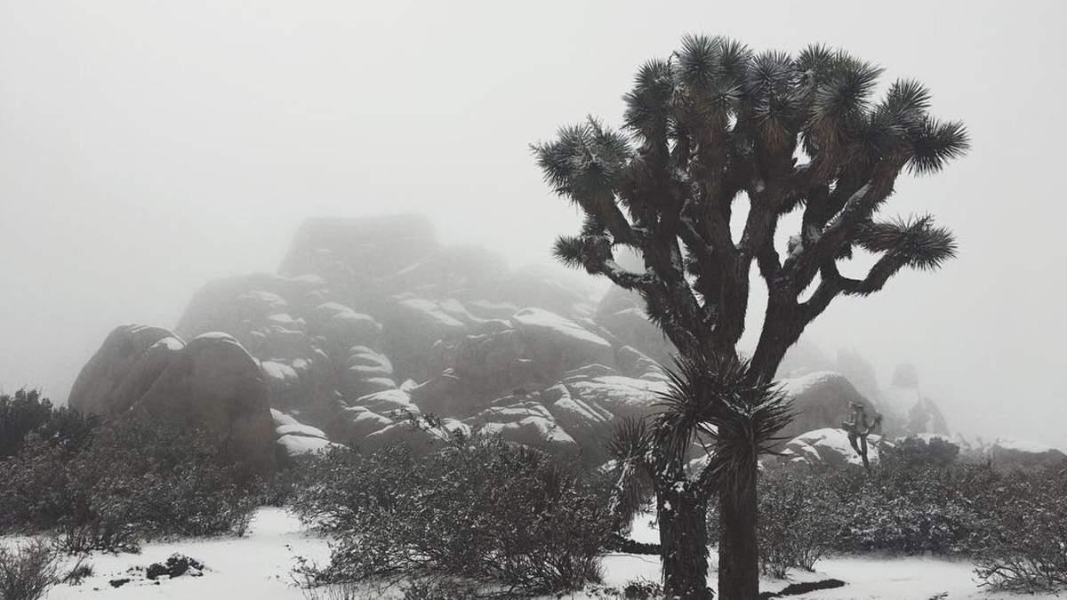 """Национальный парк """"Джошуа Три"""" в Калифорнии"""