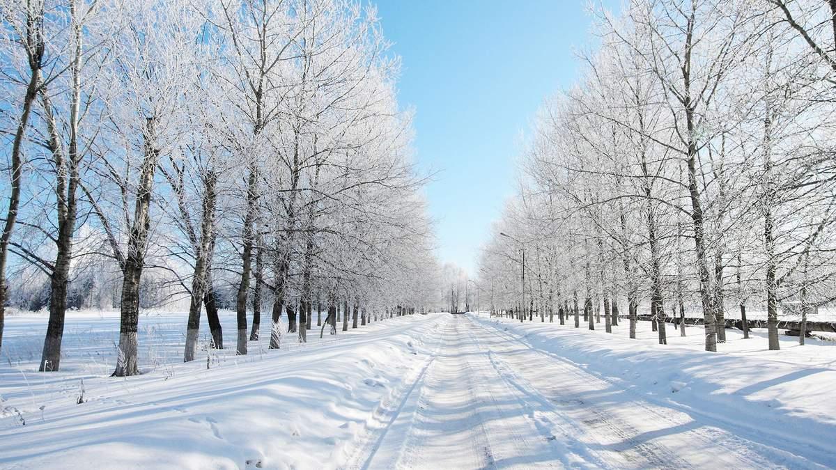 Погода 23 лютого 2019 Україна - прогноз погоди від синоптика
