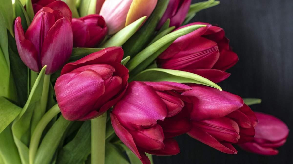 Привітання з 8 березня 2019 - вітання з 8 березня у прозі та віршах