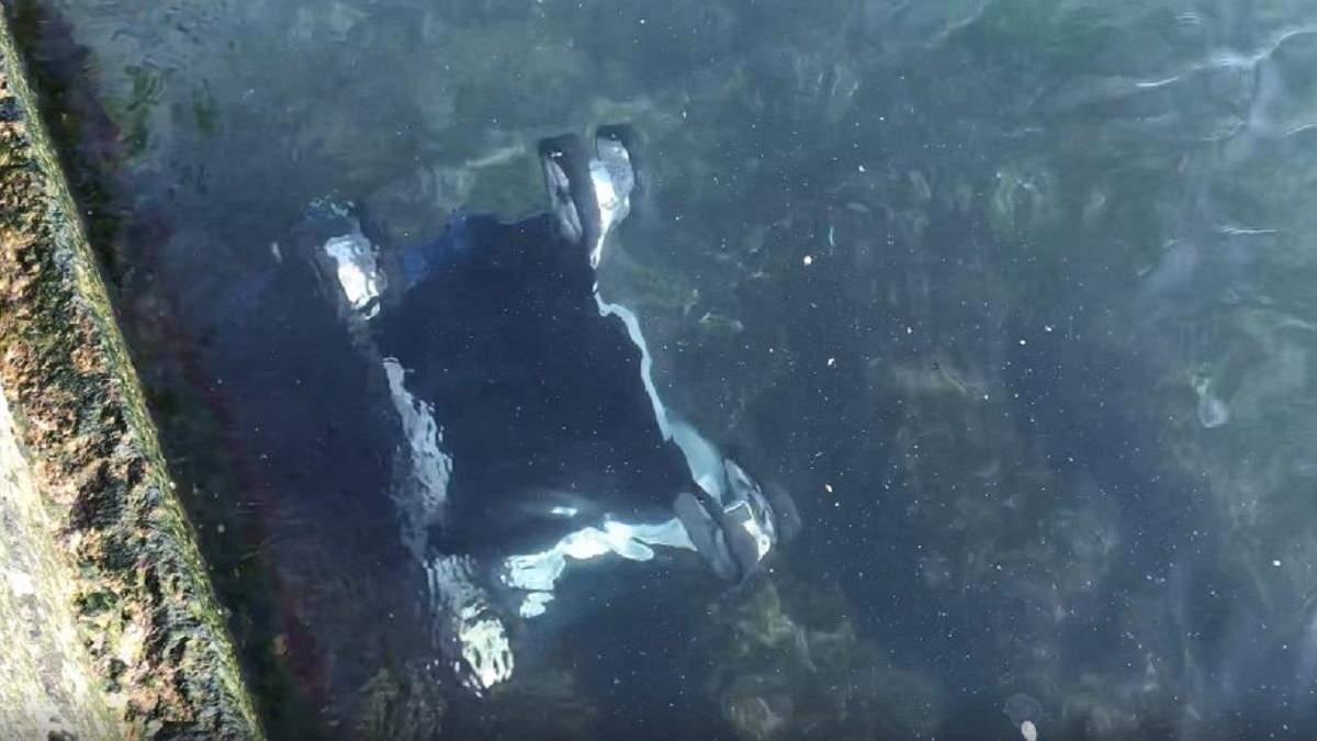 В Одесі вітер здув візок із дитиною у море