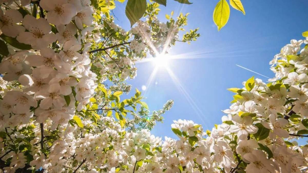 Погода 1 квітня 2019 Україна - що обіцяє синоптик