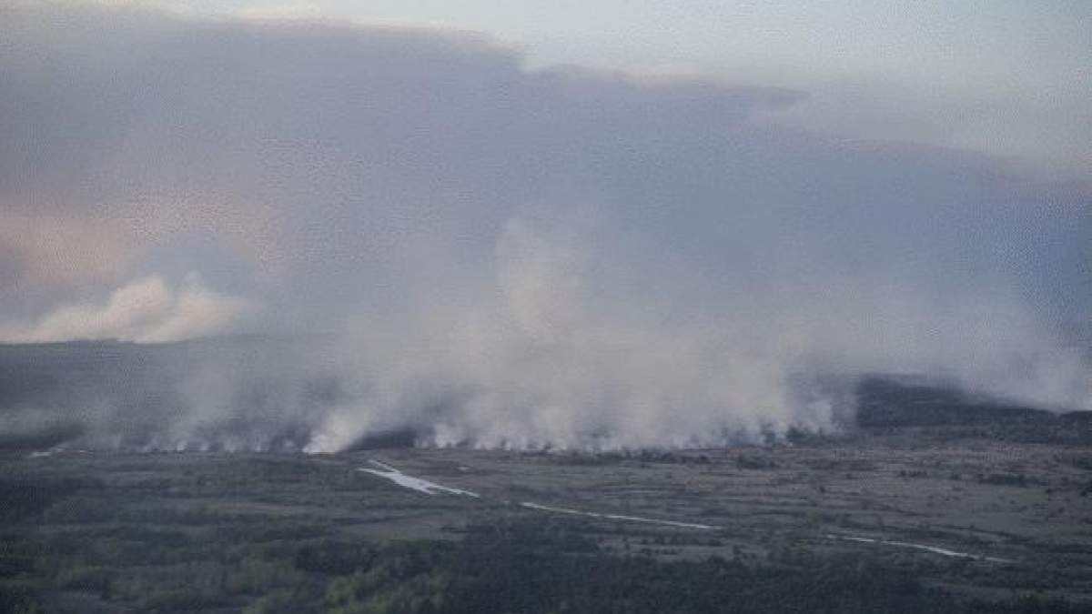 У Чорнобильській зоні відчуження виникла пожежа – загорілася трава