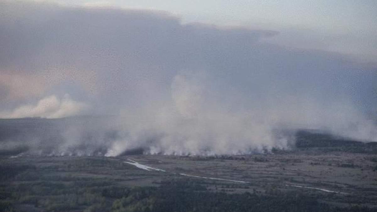 В Чернобыльской зоне отчуждения вспыхнул пожар: фото