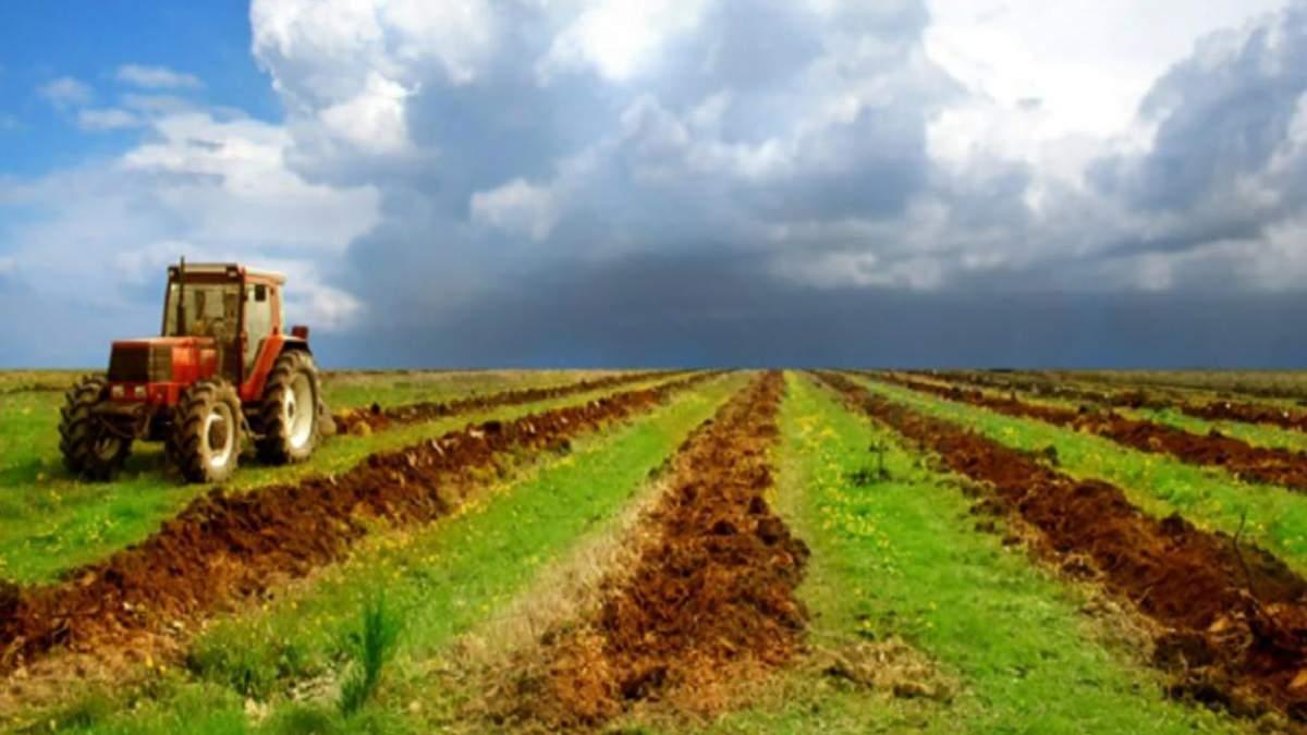 """Сім схем використання держземель агрокомпаніями в умовах """"тіньового"""" ринку землі"""