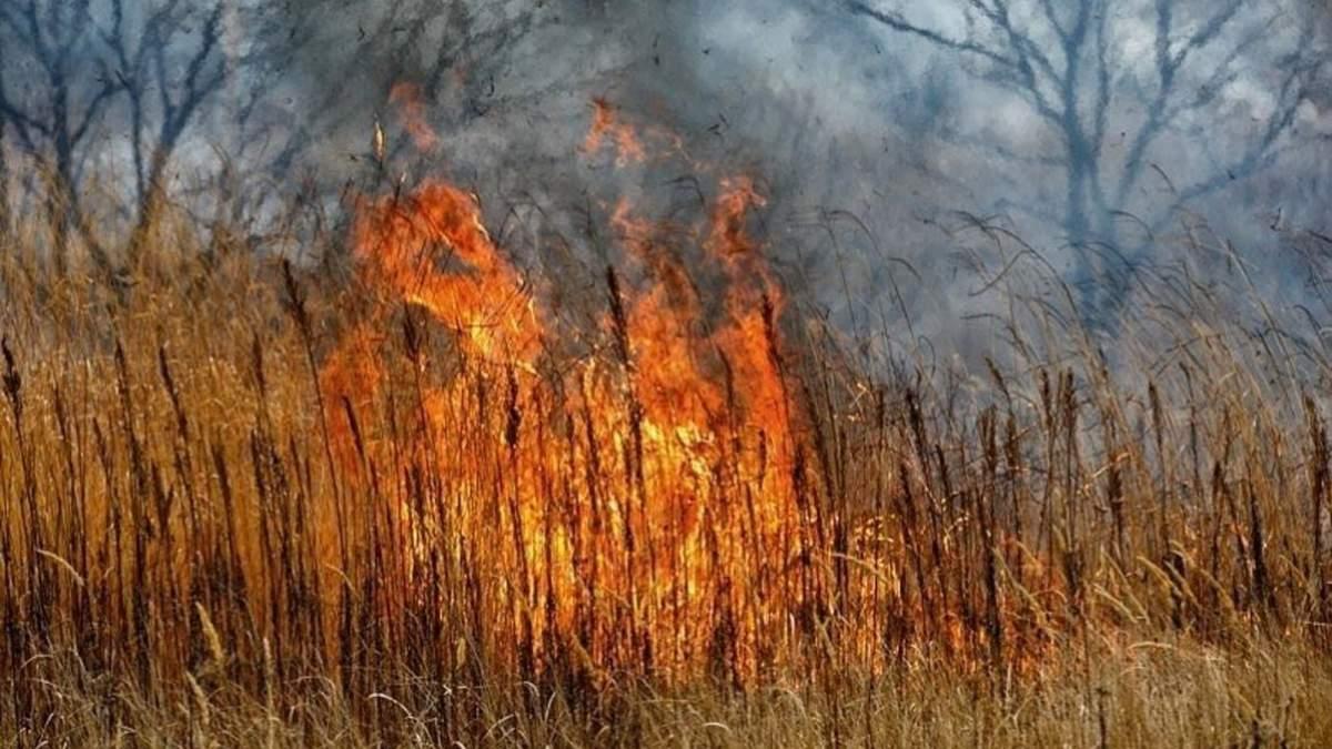 Пожежа у РФ