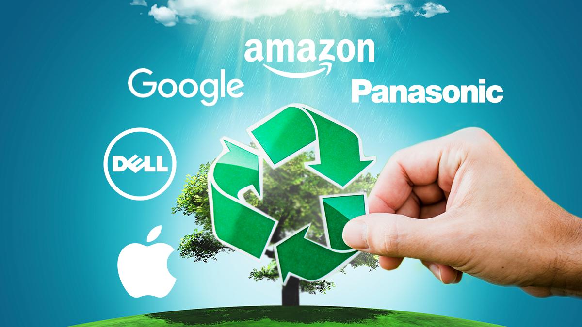День Земли 2020: 5 самых экологических компаний мира