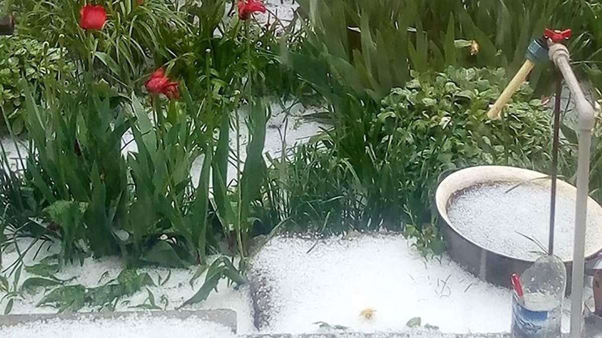 В Украине в конце весны выпал снег