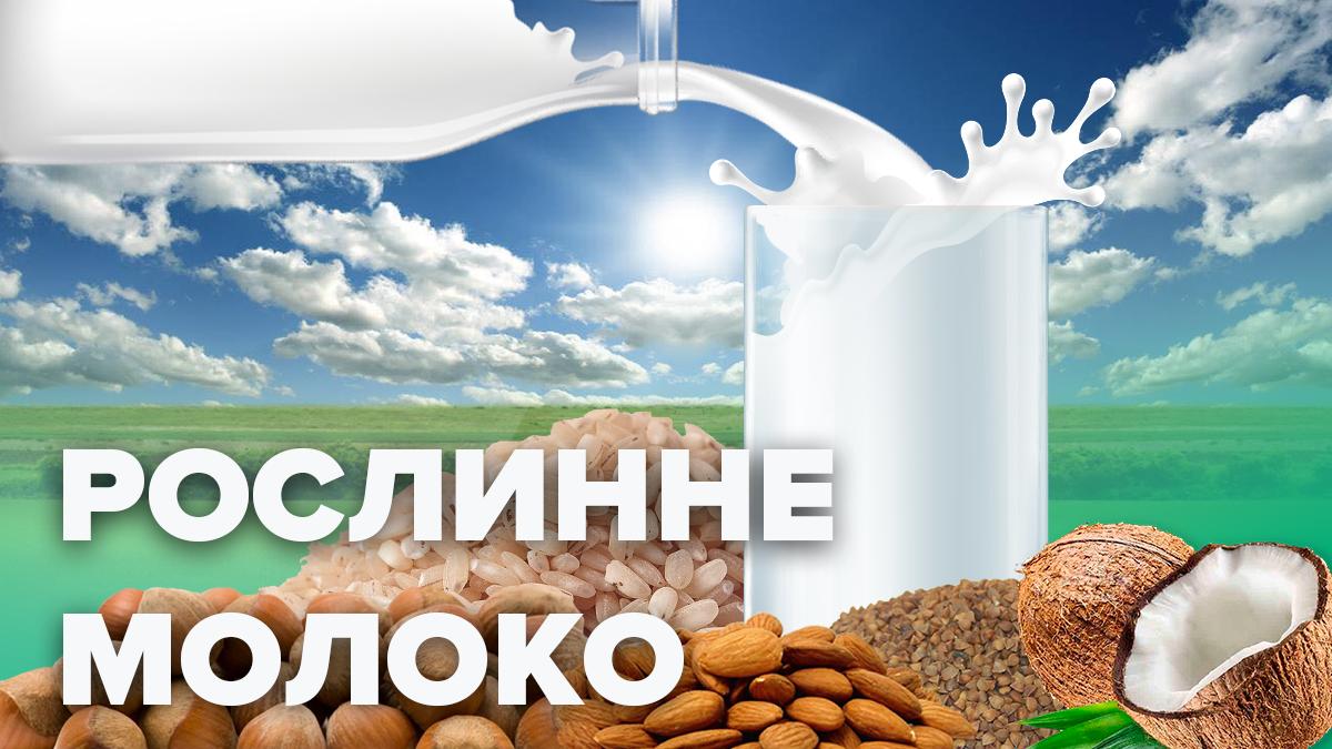 Растительное молоко: польза и вред