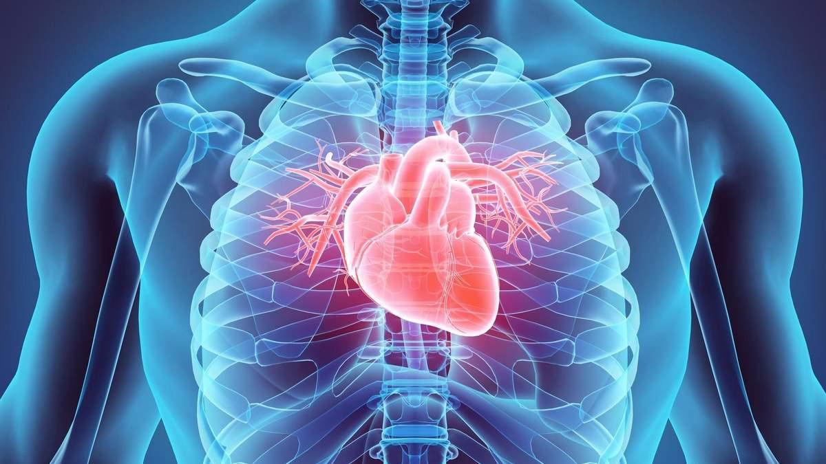 Знайшли спосіб, який швидко відновить серце після нападу