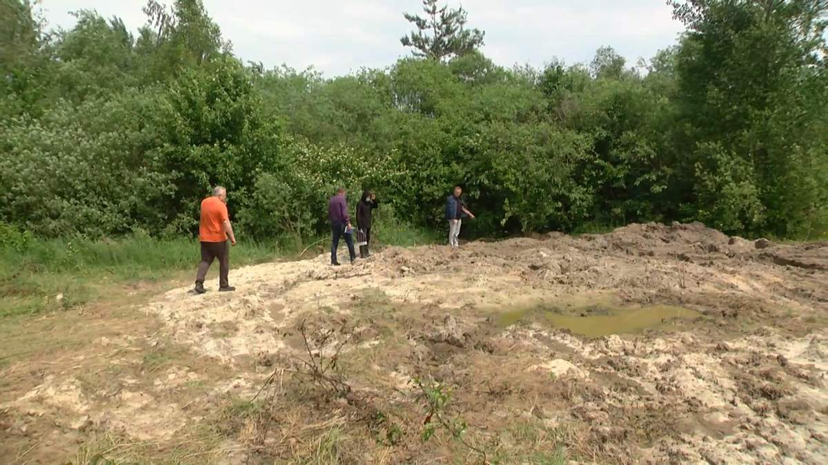На Львовщине на земельных участках для военных обнаружили свиной могильник: видео