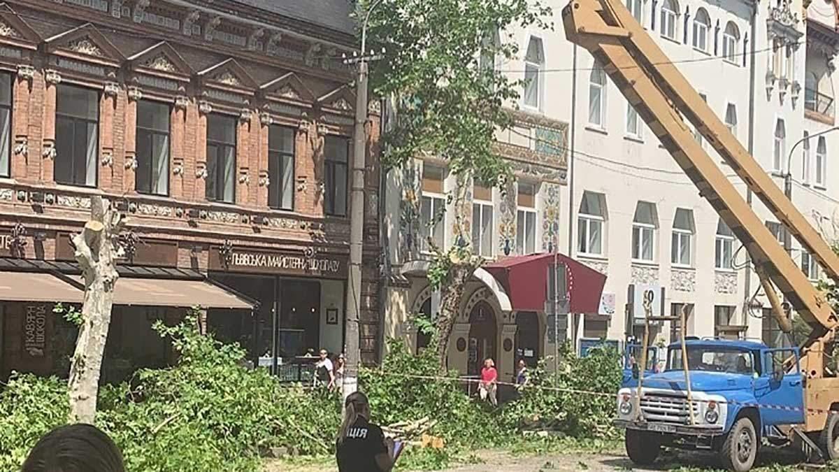 Обрізка дерев у Дніпрі