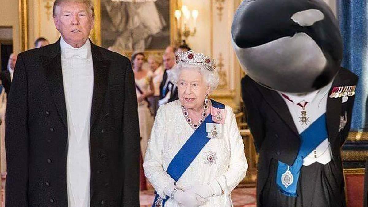 """Меми про Трампа і """"принца китів"""""""