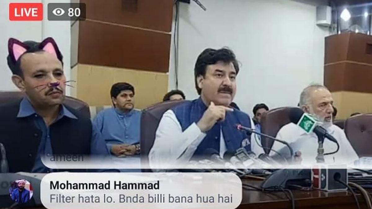 """""""Котяче засідання"""" місцевого уряду у Пакистані"""