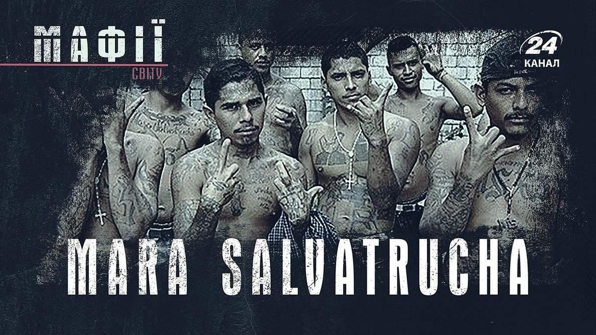 Як мігранти перетворилися на жорстоких вбивць: вся правда про Mara Salvatrucha