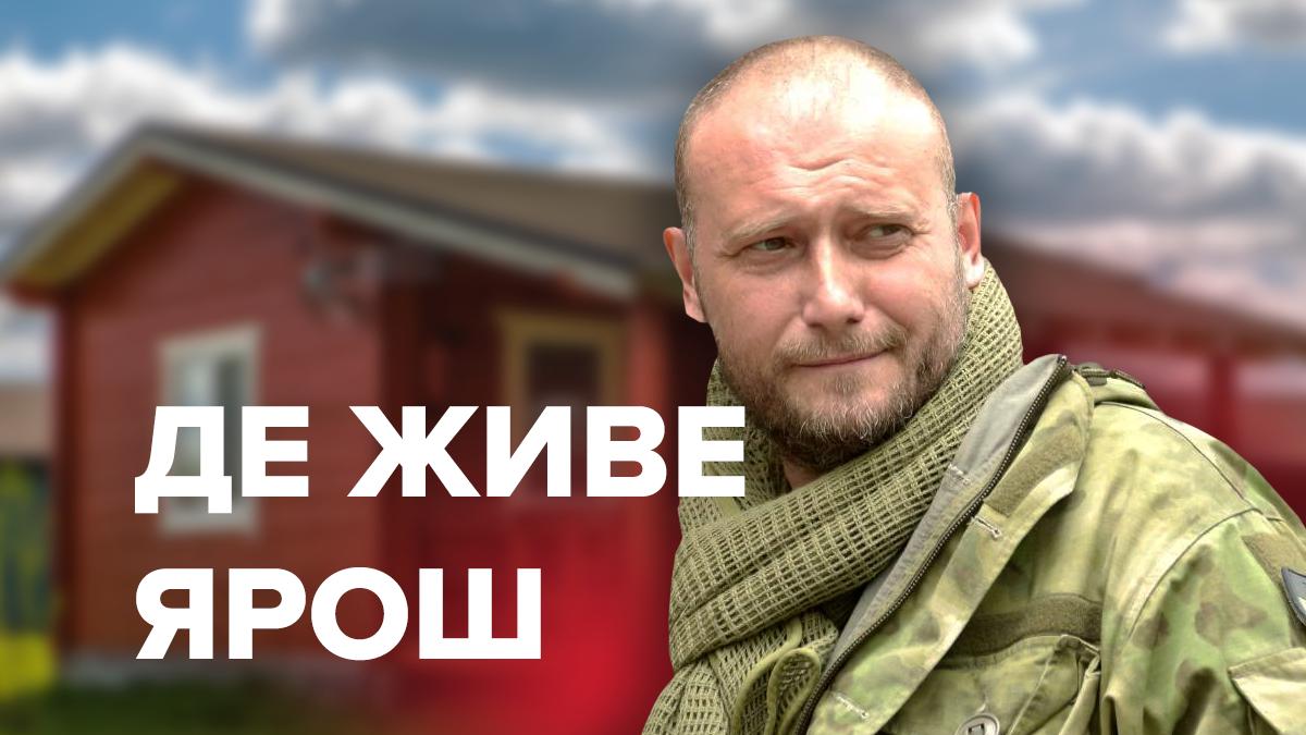 Недвижимость Дмитрия Яроша – имения, которыми владает кандидат
