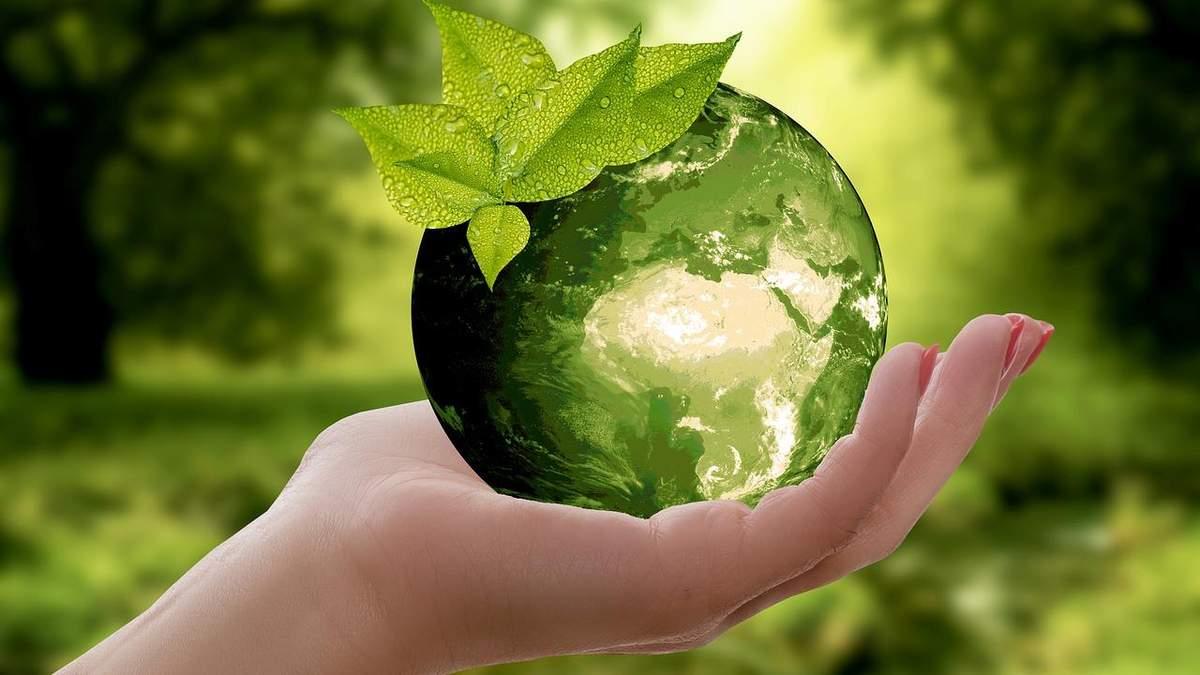 Екологія - все, що потрібно знати