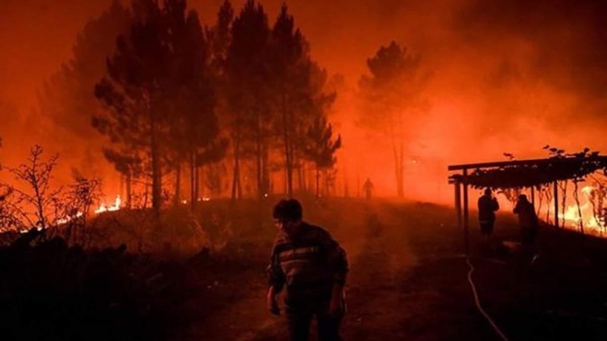 Лісові пожежі в Португалії