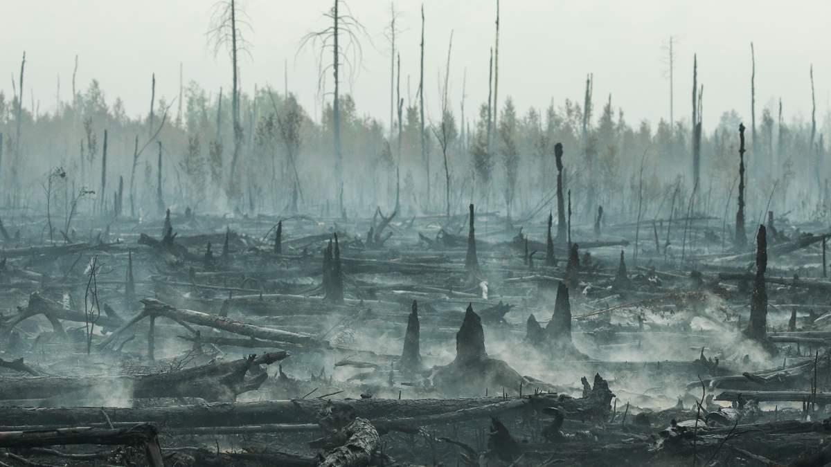 Пожар в Сибири 2019 – видео со спутника пожара, его не тушат из-за экономии
