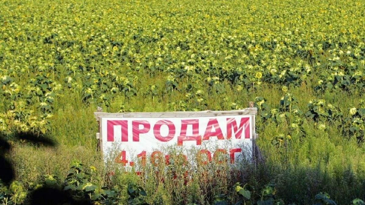 Рынок земли в Украине: как реформа может повлияет на экономику страны и кошельки украинцев