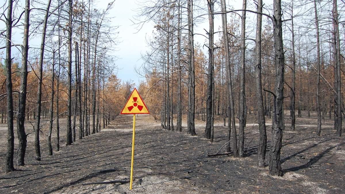 Британські вчені створили горілку з Чорнобиля